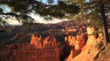 Bryce Amphitheater Through Pine Trees At Bryce Canyon National Park, Utah