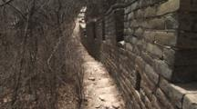 Original Section Of The Great Wall Walkway Covered With Trees, China, Jinshanling