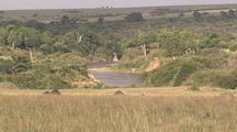 Mara River Scenic