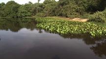 Going Down Pantenal River