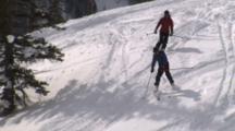 People Cross Country Skiing, Telemark Skiing