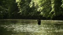 Slow Motion, Man Fly Fishing Standing In River
