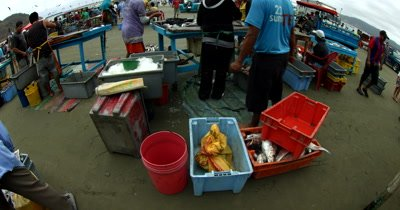 Wide shot of the vendors at the Fish Market at Puerto Lopez.