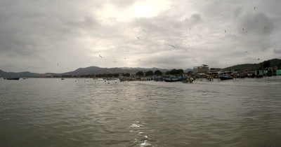 Wide Shot of the Fish Market of Puerto Lopez with Frigates flying.