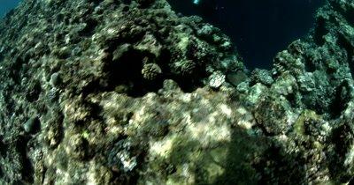 Reveal shot of Divers entering Blue Holes Cave, Palau