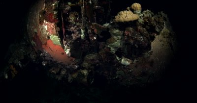 Night shot of Jake's sea plane wreck, a Aichi E13A-1 Japanese Navy Seaplane from World War II