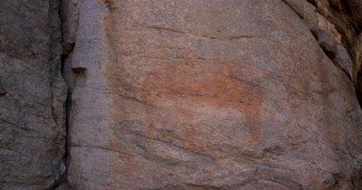 Bushman rock painting of an elephant on a quartzite rock face at Tsodilo Hills