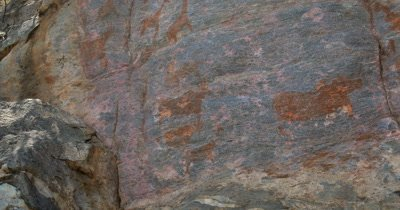 Bushman rock paintings of Giraffe and Antelope on a quartzite rock face at Tsodilo Hills