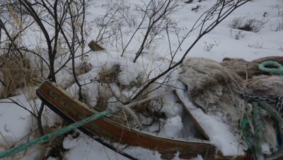 Dog Sled stuck in the snow of the Arctic tundra
