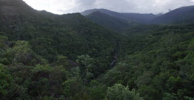 Scenic Overlook View of Dense Atlantic Rainforest