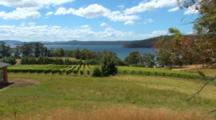 Seaside Vineyard, Winery
