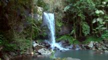 Curtis Falls, Queensland