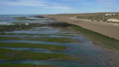 Punta Norte sea lion colony,Establishing 4K aerial wide shot at low tide