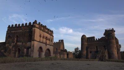 Gondar Fasil Ghebbi, wide shot at dawn with birds