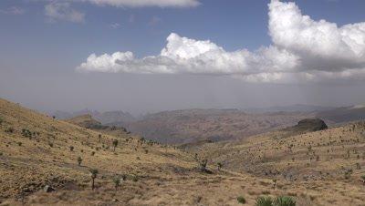 Simien mountains landscape with lobelias, pan LR