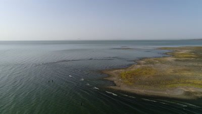Lake Turkana shore with fishermen standing in the water, 4k Aerial