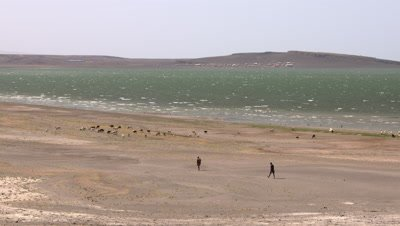 Lake Turkana wide shot men with goats, UHD 4K