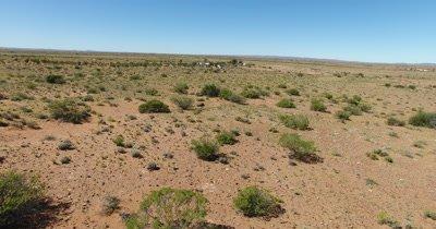 Aerial of Emu in Australian Outback_4K
