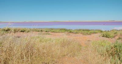 Red/Pink - Bumbunga Lake South Australia