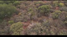 Low Aerial Fly Over Sagebrush In California. Shot From A Hot Air Balloon.
