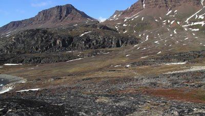 arctic tundra and basalt mountains in the background