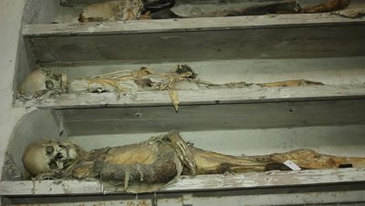 mummies resting on shelves in the caputine catacomb