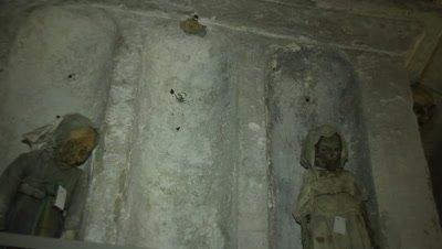 Little children mummies in the capuchin catacomb