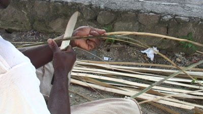 Splitting amboo for building a fish trap,kalinago tradition