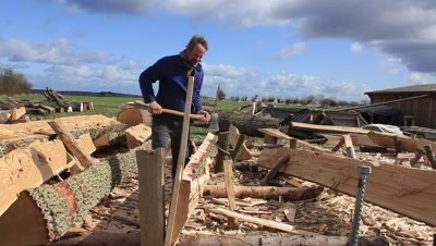 Boatbuilder trimming an oak plank,ment for the reconstruction of a viking ship