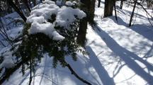 Time Lapse Shadows/Snow