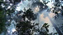 Smoke From Fogging Machine