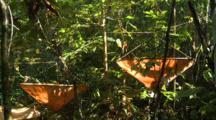 Fogging Equipment Set Up And Fogging In Jungle