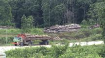 Logged Trees And Trailer At Side Of Logging Road
