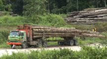 Logged Trees On Trailer At Side Of Logging Road
