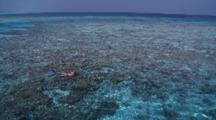 Woman Snorkelling In Clear, View From Boat, Vaavu Atoll, The Maldives