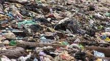 Beach Littered With Garbage, Kudat, Malaysia, Borneo