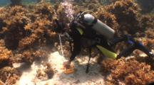 Ocean Science Stock Footage