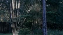 Backlit Water Sprinkler In Whitefish, Montana, USA