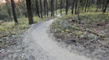 Courtney Feldt Mountain Bikes On Dusty Singletrack Of The Whitefish Trail Near Whitefish, Montana, USA MR