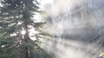 Mist From Holland Falls Is Backlit By Setting Sun In The Lolo National Forest, Montana, USA