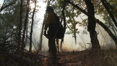 Wildland firefighter stands watch over a burning forest