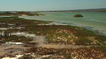 Coastal Marshes Or Wetlands. Ningaloo Region Western Australia