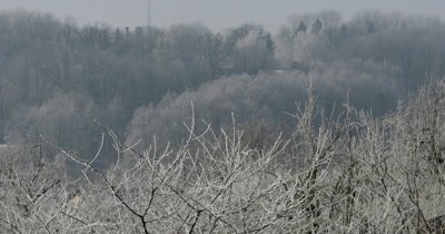 Winter time over the village sun day, it mists twilight hill forest