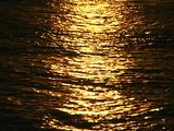 Golden Ocean Reflection