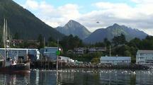Boat Harbor/ Fishing Boat