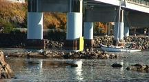 Sail Boat Passing Under A Bridge/Fall Colors.