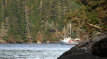 Fishing Boat ( Power Troll) Fishing