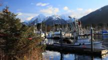 Commercial Fishing Boat Harbor