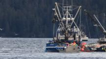 Commercial Fishing- Seine Net Fishery