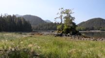 Coastal Wet Lands